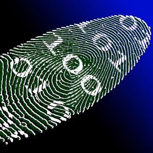 Financial Digital Identity: Landscaping a digital financial identity for SADC