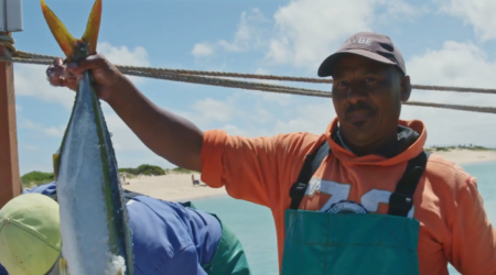 Innovation in Finance: how Abalobi is creating a thriving marketplace for South Africa's fisher communities